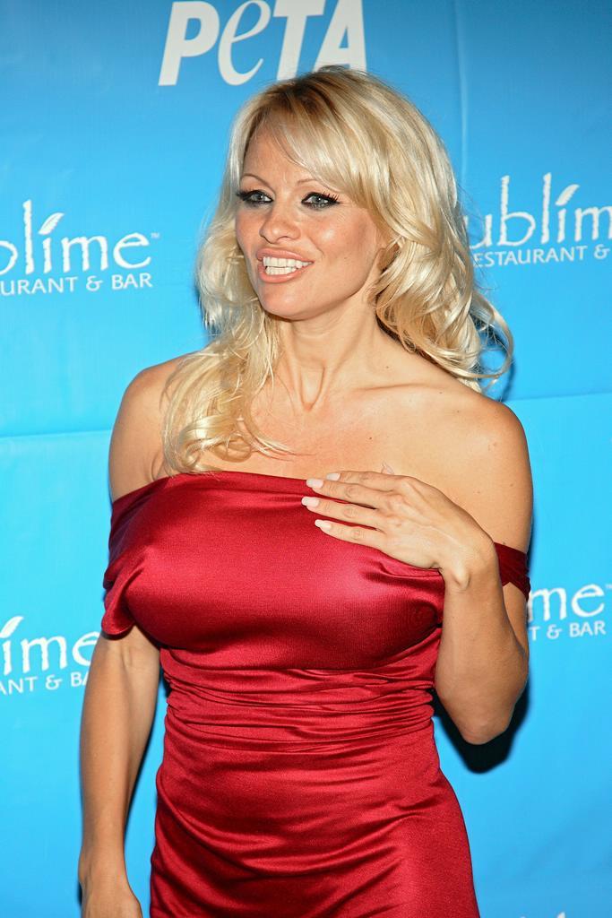 Pamela anderson porn movie clips